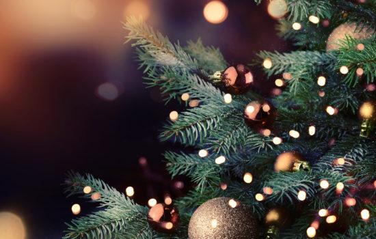 https://www.carmelitehotels.com/wp-content/uploads/2018/09/Christmas-550x350.jpg